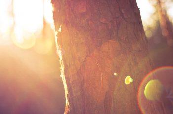14 Dôkazov, Ktoré Ťa Presvedčia, Že Sa Ti Darí Lepšie, Ako Si Myslíš