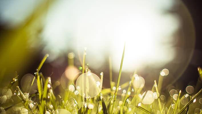 Desatoro Zásad, Podľa Ktorých Chcem Prežiť Svoj Život
