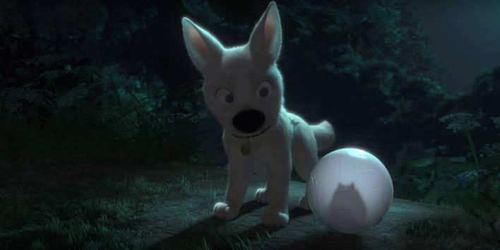 Bolt Pes Pre Každý Prípad