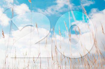 20 Mocných Afirmácií, Ktoré Ťa Naučia Žiť Správne, Ktoré Ťa Naučia Žiť Šťastne