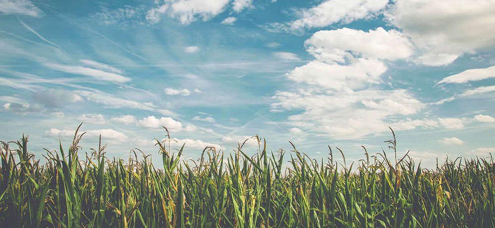7 Dychberúcich Citátov, Ktoré Ťa Prinútia Prehodnotiť Spôsob, Ktorým Žiješ Svoj Život